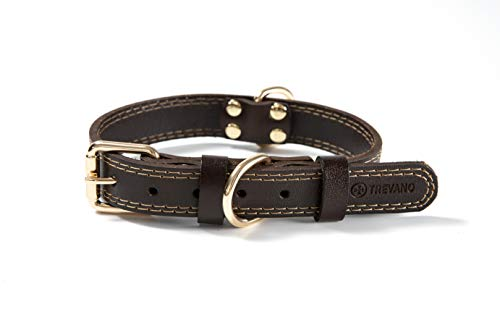 Trevano Leather Dog Collar