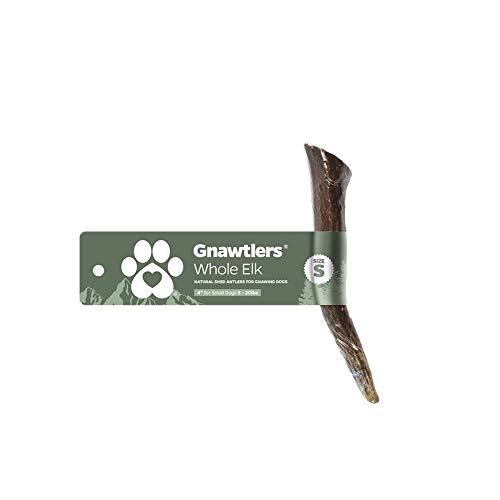 Gnawtlers Premium Elk Antlers