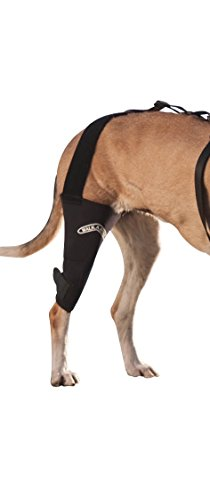 Walkabout Canine Knee Brace