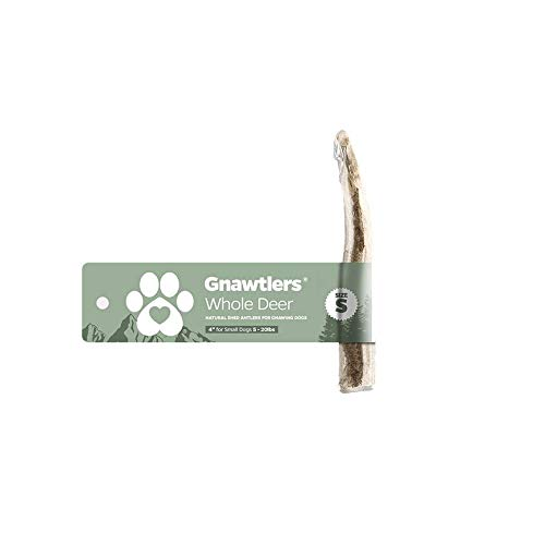 Pet Parents Gnawtlers Premium Deer Antlers
