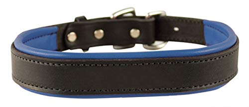 Perri's Padded Leather Dog Collar