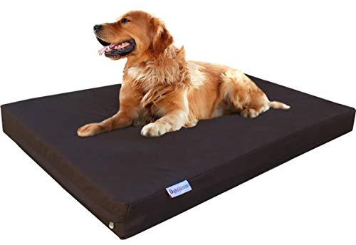 Dogbed4less Durable Memory Foam Dog Bed