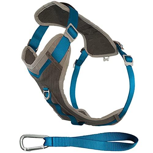 Kurgo Small Dog Harness