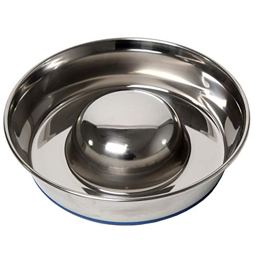 DuraPet Slow Feed Stainless Steel Dog Bowl