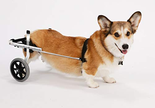 K9 Carts Wheelchair For Small/Medium Dogs
