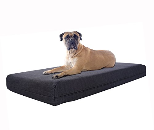 Pet Support Systems Orthopedic Memory Foam Bed