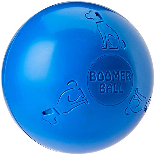 The Company of Animals Boomer Ball