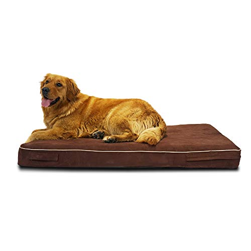LaiFug 45DHI Memory Foam Orthopedic Dog Bed