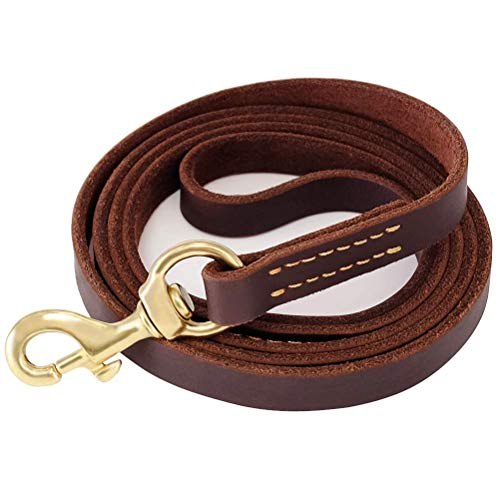 Fairwin Leather Dog Leash