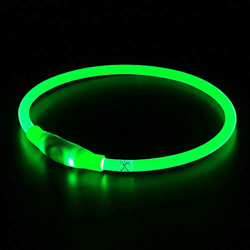 BSeen LED Dog Collar