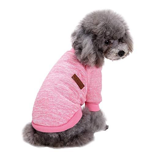Fashion Focus On Knitwear Dog Sweater