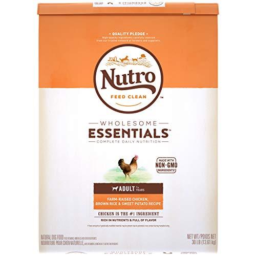 Nutro Natural Choice Dry Food