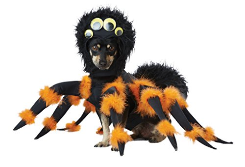California Costume Collections Spider Pup Dog Costume