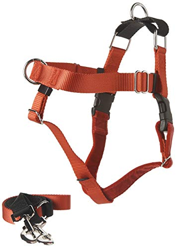 Freedom No-Pull Harness Training Package