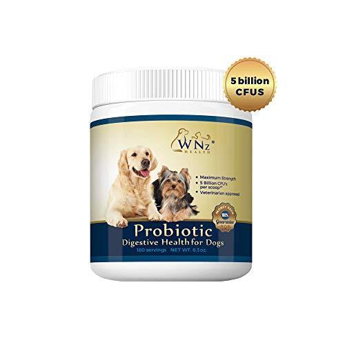 WetNozeHealth Probiotics
