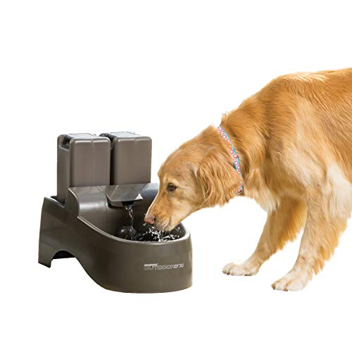 PetSafe Drinkwell Indoor/Outdoor Dog Fountain