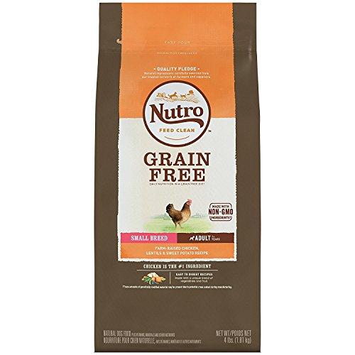 Nutro Small Breed Dry Dog Food