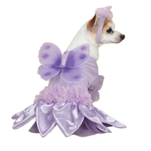 Casual Canine Sugar Plum Fairy Dog Costume