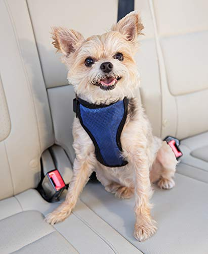 Solvit Deluxe Car Safety Dog Harness