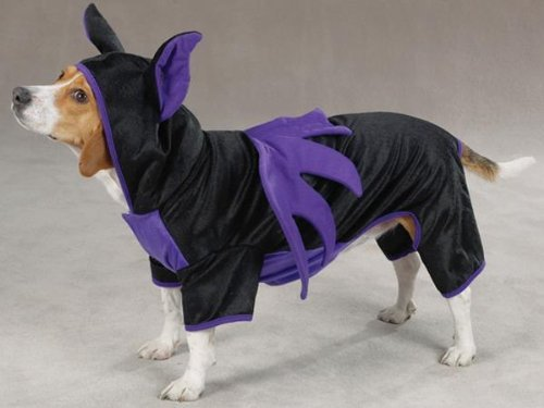 Casual Canine Flying Bat Halloween Dog Costume