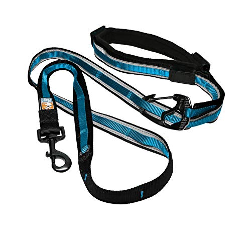 Kurgo 6-in-1 Quantum Hands Free Dog Leash