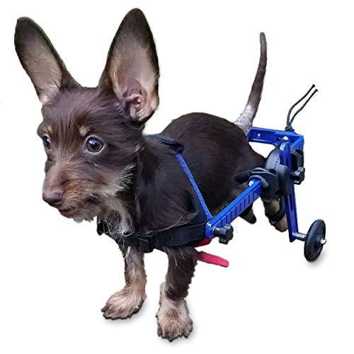 Walkin' Wheels Wheel Chair For Mini/Toy Breeds