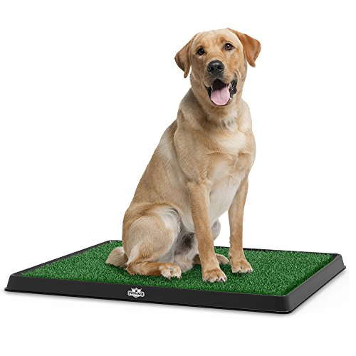PetMaker Artificial Grass