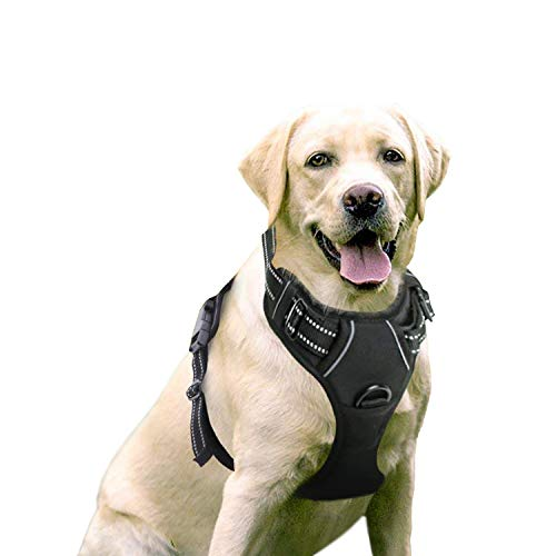 rabbitgoo No-Pull Dog Harness Padded Adjustable Pet Vest Harness with Handle Front Clip Harness for...