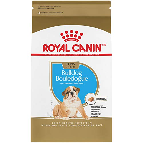 Royal Canin Bulldog Puppy Dry Dog Food