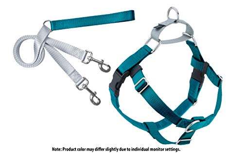 2 Hounds Design Freedom No-Pull Dog Harness with Leash, Medium, 1-Inch Wide, Teal