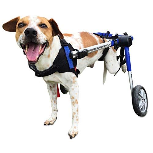 Walkin' Wheels Wheelchair For Medium Dogs