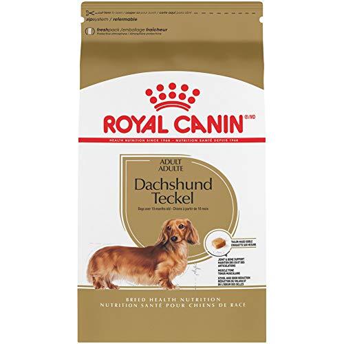 Royal Canin Dachshund Dry Dog Food