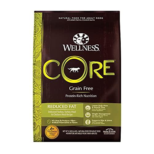 Wellness CORE Natural Reduced Fat Formula