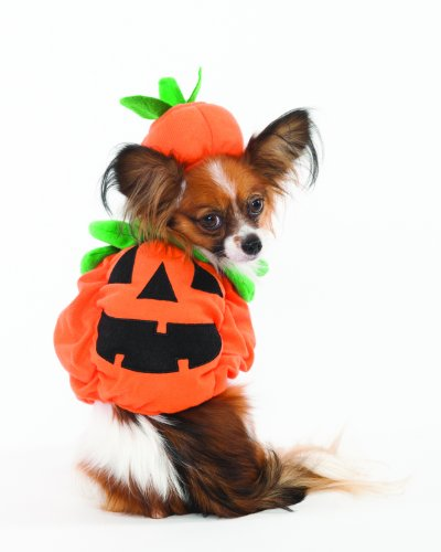 Fashion Pet Halloween Pumpkin Dog Costume