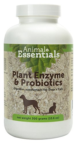 Animal Essentials Plant Enzymes & Probiotics