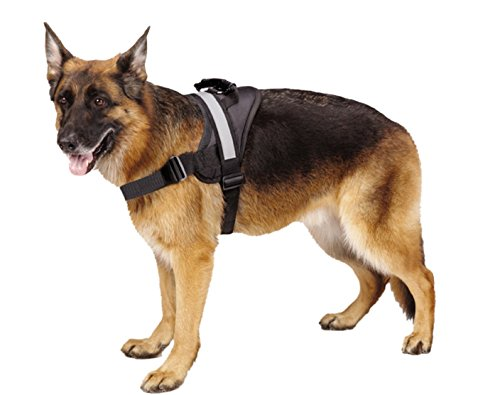 Big Dog Soft Reflective No Pull Black Harness