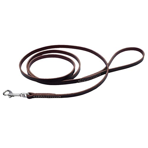 Coastal Pet Leather Circle T Leash