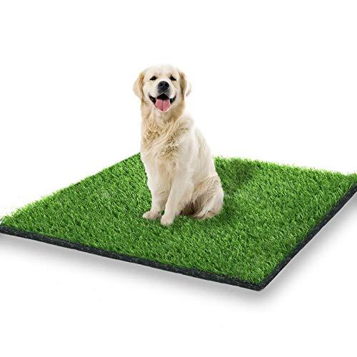 StarRoad-Tim Artificial Grass Rug