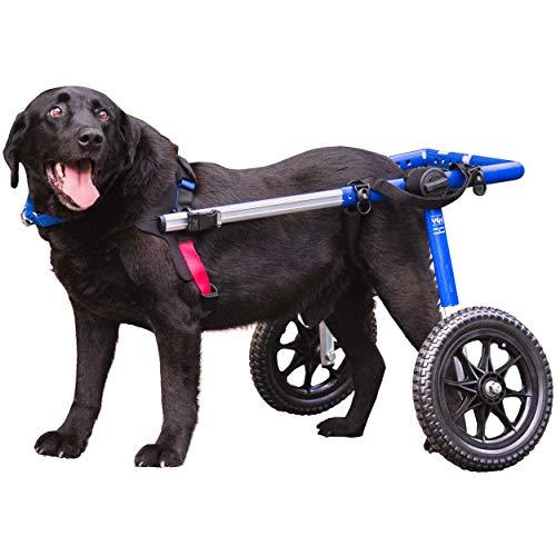 Walkin' Wheels Wheelchair For Large 70-180lb Dogs