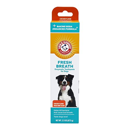 Arm & Hammer Advanced Care Enzymatic Dog Toothpaste