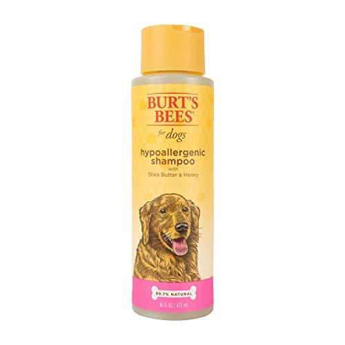Burts Bee Hypoallergenic Shampoo