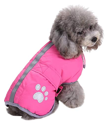 Queenmore Cold Weather Dog Coat