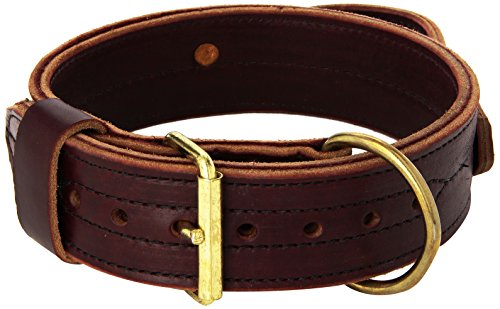 Signature K9 2-Inch Heavy Agitation Collar