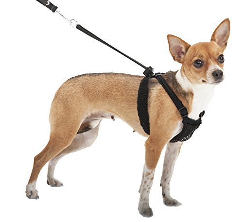 YUP! Nylon Non-Pulling Dog Harness