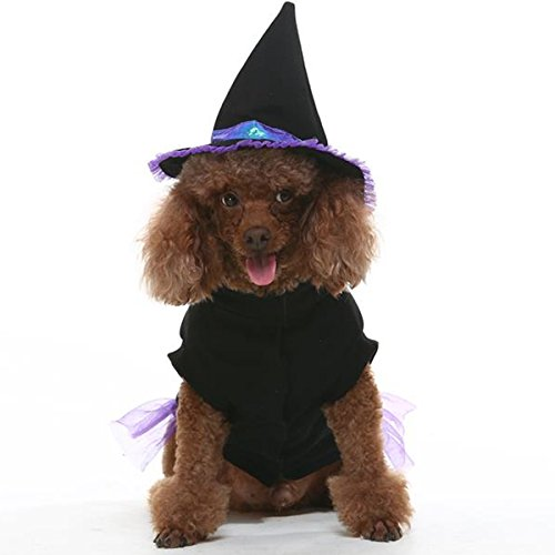 EXPAWLORER Dog Halloween Witch Costume