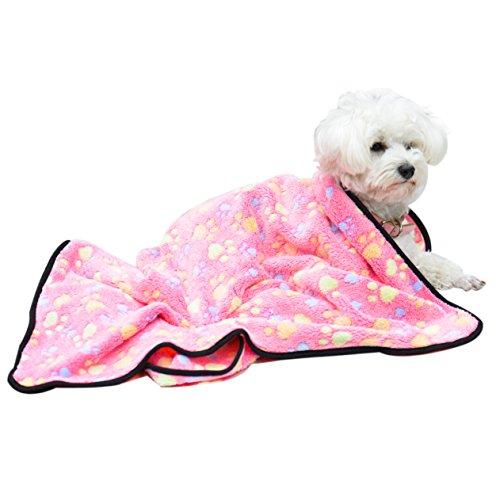 Expawlorer Pink Pet Blanket