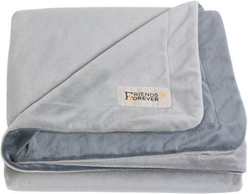 Friends Forever Deluxe Dog Blanket/Throw