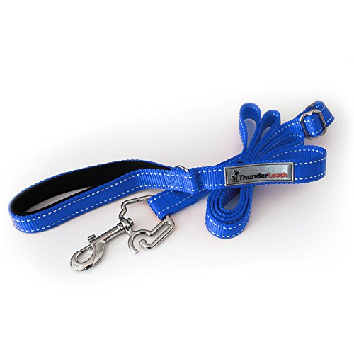 ThunderLeash No-Pull Dog Leash