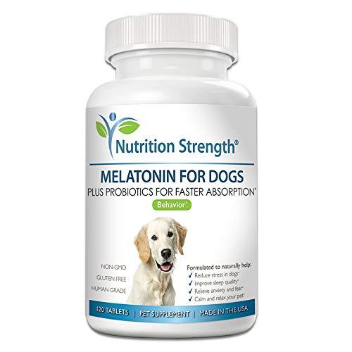 Nutrition Strength Melatonin For Dogs