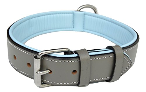 Soft Touch Collars Padded Leather Collar